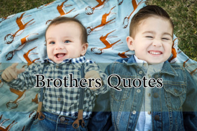 brother quotes hazrat ali quotesbrother quotes hazrat ali quotes